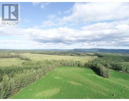 954 JACKFISH LAKE ROAD, chetwynd rural, British Columbia